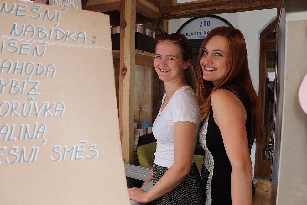 Vegan zmrzlina před prodejnou Dobré konopí v Krajinské ulici v centru Budějovic.