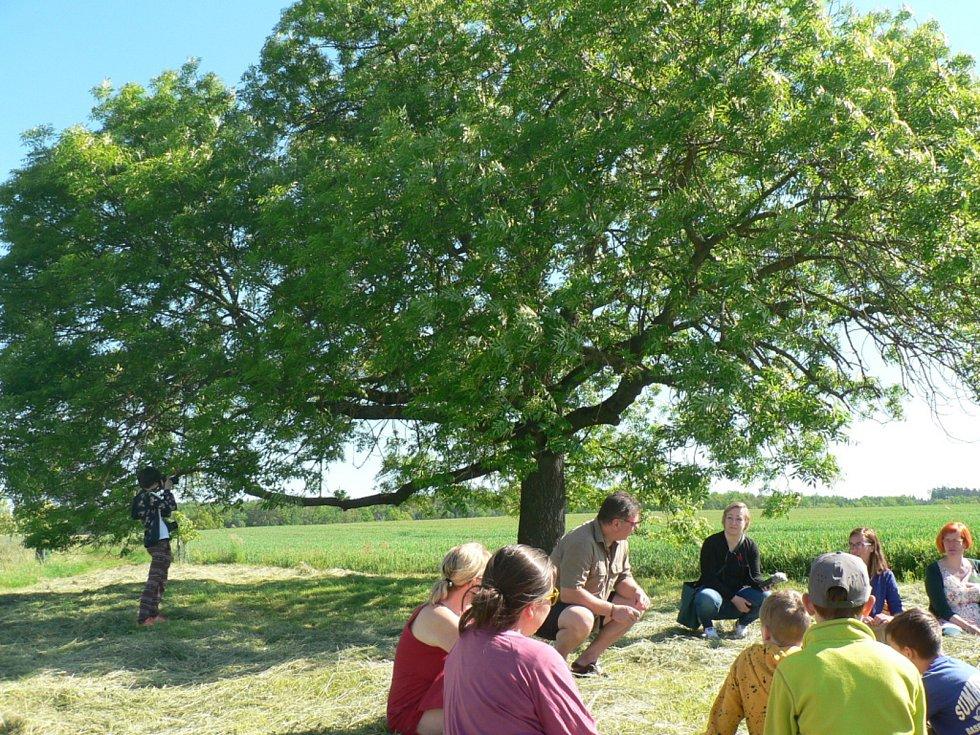 V anketě Strom roku 2021 bude Českobudějovicko reprezentovat jasan ztepilý zvaný Strážce Výštice. Roste u statku Výštice. Na snímku setkání, při němž se losovalo číslo stromu pro finále ankety.