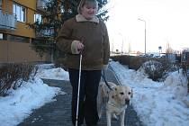 Petra Šulcová (34) z Českých Budějovic působí jako oblastní poradkyně pro držitele vodicích psů. Na snímku je ve společnosti svého čtyřnohého přítele labradora Kolji (7,5)
