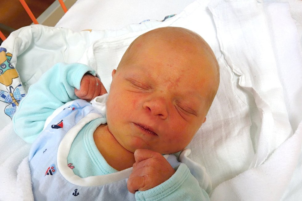 Maxmilián Dašek se narodil 21. 1. 2019. Maminka Jaroslava Dašková jej přivedla na svět ve 23.53 h., vážil 3,31 kg. Poznávat svět bude v jihočeské metropoli.