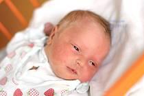 Michaela Váňová je maminkou novorozené Anežky Váňové. Porodila ji 16. 12. 2019 ve 22.30 h., vážila 3,55 kg. Doma v Polžově na ni čekaly sestry Johanka a Barbora.