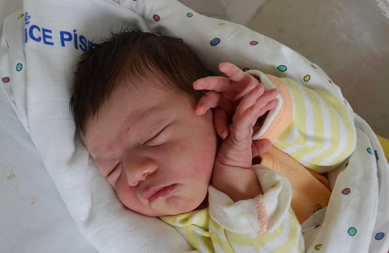 V Cehnicích bude vyrůstat novorozená Ema Bílková. Rodiče Magdaléna a Tomáš Bílkovi ji přivítali na světě 3. 10. 2021 ve 22.33 h, vážila 3,30 kg.Foto: Jana Krupauerová
