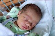 Čtyřletá Rozinka a dvouletá Ája se těšily na narození své sestřičky Barbory Novákové. Dočkaly se 12. 2. 2018 ve 21.29 h. Babora, která vážila 3,27 kg, vyroste v Hlavatcích.