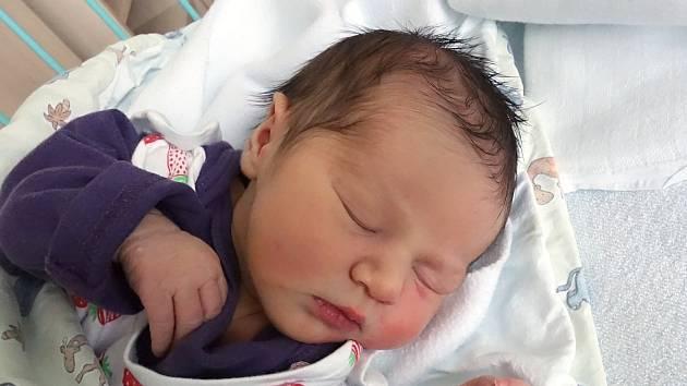 Desetiletý Tomáš a 6letá Denisa z Ohrazení mají od 7. 1. 2019 sestřičku Kristýnu Tůmovou. Maminka Libuše Holubová ji porodila v 5.15 h., vážila 3,05 kg.