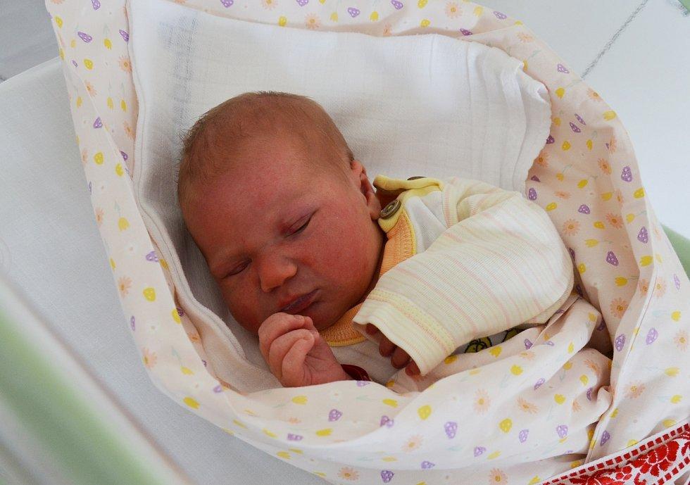 Františka Marie Joza z Písku. Dcera Andrey Joza přišla na svět 24. 4. 2021 v 19.49 h. Při narození vážila 3,40 kg. Doma se na sestřičku těšili bráškové 8letý Alex a 13letý Daniel.