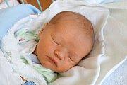 V neděli 19. listopadu 2017 se v českobudějovické nemocnici narodil David Jánoš. Maminka Lucie Jánošová své první miminko porodila v 6.14 hodin. David Jánoš po narození vážil 3500 gramů a  bydlet bude v Českých Budějovicích.