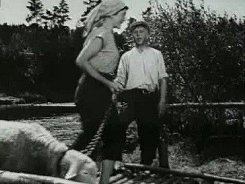 V jižních Čechách se natáčel film Dobrodružství na Zlaté zátoce. Jarmila Mrázová vystupuje ve filmu z přívozu. Zdraví herce Hlavatého.