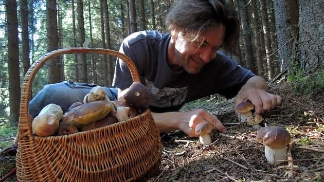 Houbaři o víkendu zažívali v šumavských lesích žně.