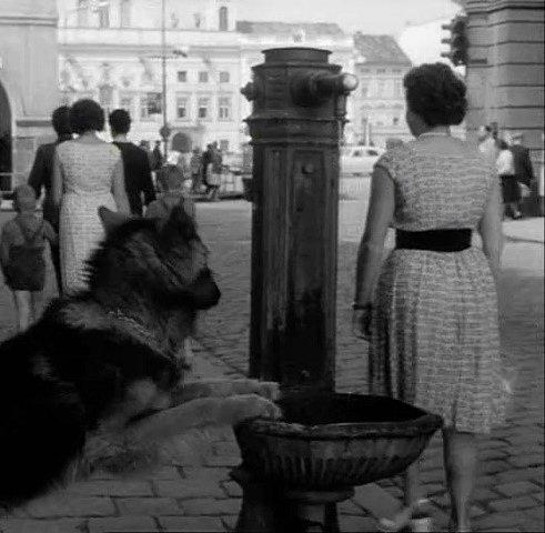 Pumpa v českobudějovické ulici (dnes Karla IV). Vzadu je radnice.