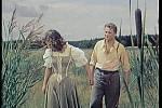 Krajina na Třeboňsku dodala do filmu rybniční idylu.