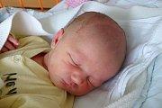 Josefína Sattranová se v českobudějovické nemocnici narodila 30. 10. 2017 v 10.01 h, vážila 3,2 kg. Svět bude poznávat doma v Českých Budějovicích.