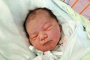 Mary Miľová se mamince Denise Slivkové narodila 15. 11. 2017 v 11.21 h. Vážila rovné tři kilogramy. V Českých Budějovicích se na novorozenou sestřičku těšily devítiletá Deniska a šestiletá Nelinka.