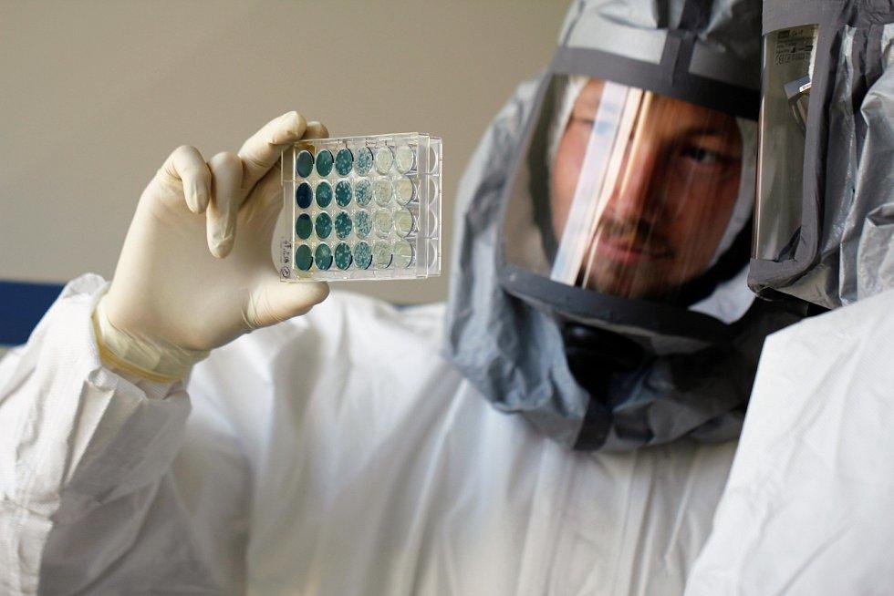 Na snímku z výzkumné laboratoře BSL3 s vysokým stupněm zabezpečení virolog Martin Palus.