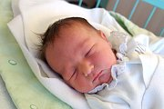 V Týně nad Vltavou bude dělat první krůčky Viktorie Ficová. Maminka Věra Ficová ji porodila 27. 11. 2018 v 8.29 h., vážila 3,56 kg. Doma na ni čekali 10letá Anička a 6letý Dan.