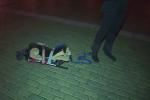 Mladý muž v Budějovicích venčil umělého psa.