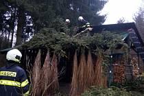 Popadané stromy páchaly škody i v zahradách, jak je patrné ze snímku ze Spolí.