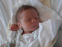 V neděli 19.7.2015 v 6 hodin a 46 minut pohlédla na tento svět prvorozená Stella Fröhlichová. Nová obyvatelka města České Budějovice se po narození pyšnila váhou 2,51 kg. Pyšnými rodiči jsou Milan Maryška a Martina Fröhlichová.