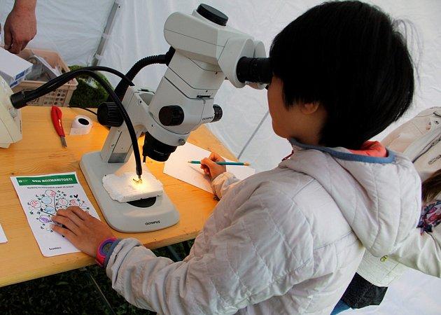 Jihočeští vědci přichystali akci nazvanou Den rozmanitosti, nabídne experimenty a zajímavosti nejen opřírodě.