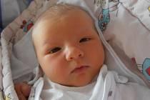 3,62 kg to byla porodní váha, jíž se pyšní holčička jménem Sofie Falberová. Budoucí obyvatelka města Zliv se narodila přesně ve 14 hodin a 28 minut v neděli 31.3.2013.