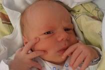 V Jankově prožije dětství po boku nyní čtyřletého brášky Vojtíka Adéla Řezníčková. Adélka se narodila 5. 5. 2015 jednu minutu po 10. hodině a vážila 2,87 kg. Šťastnými rodiči obou dětí jsou Martin a Hana Řezníčkovi.