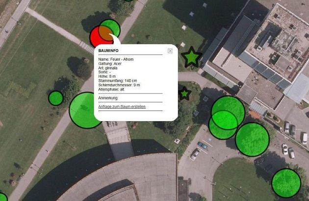 VLinci mají stromy na internetu.