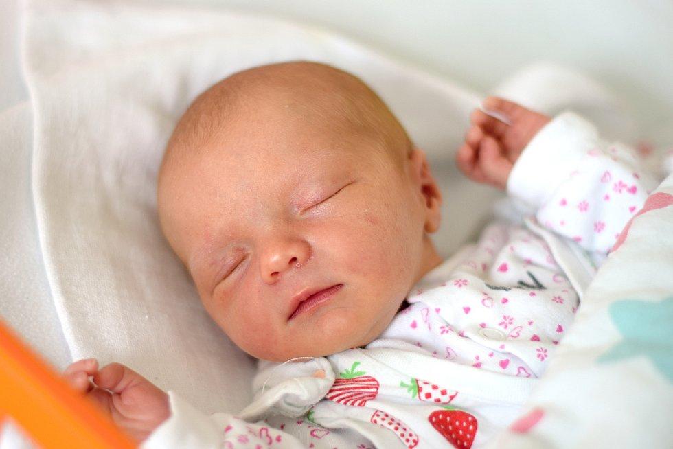 Lada Kocourková se narodila 12. 8. 2019. Maminka Hana Němečková ji přivedla na svět ve 14.40 h. Její porodní váha byla 2,67 kg. Žít bude v krajském městě.