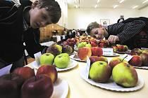Do neděle je v tělocvičně školy k vidění téměř čtyřista padesát odrůd ovoce.