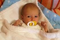 Sebastian Brabec se šťastné mamince Monice Brabcové narodil  9. 2. 2016 v 17.14 h. Vážil 3,11 kg  a měřil    48 cm. Dětství stráví v Hluboké u Borovan, kde se na něj těší prarodiče Iva a Martin a teta Iveta.