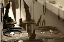 Poklady doby bronzové, které se našly na území zdejšího kraje, představuje na nové výstavě Jihočeské muzeum v Českých Budějovicích. Mezi cennostmi jsou sekeromlat, jehlice nebo náramky.