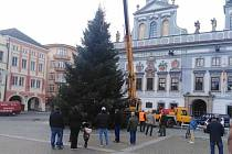 Českobudějovický vánoční strom roku 2020 je z Nemanic.