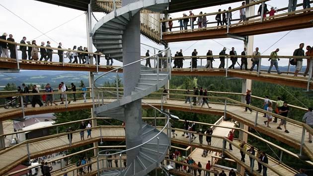 Lidé hledí na Šumavu ze stromů.