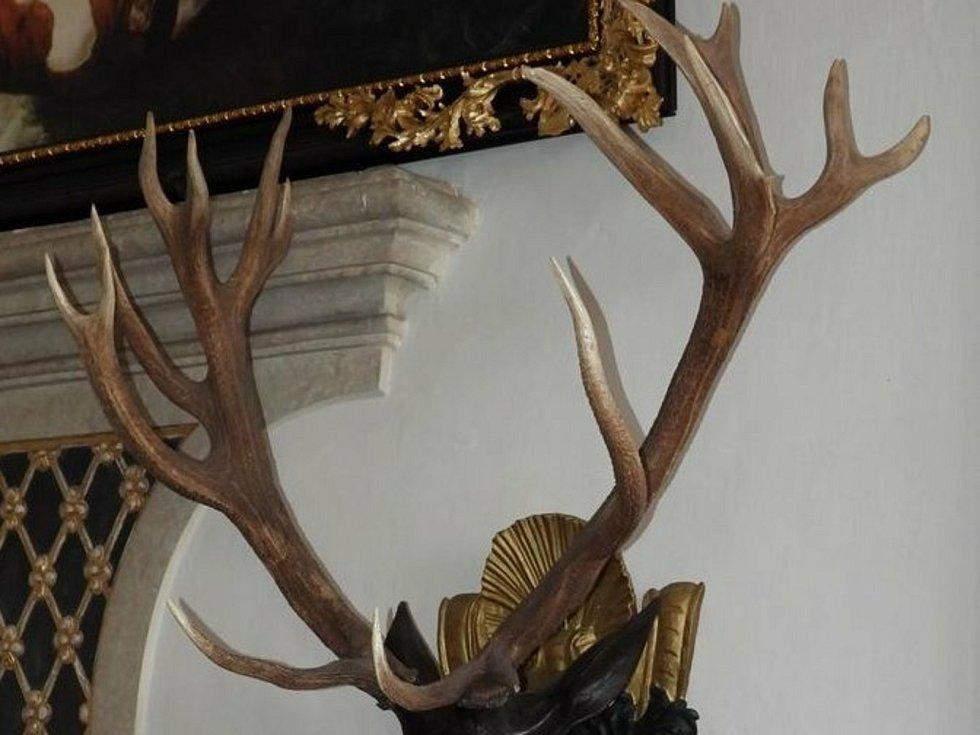 Před 290 lety byl uloven jelen šestadvacaterák – jeho paroží dlouho drželo titul světové trofeje. Nachází se v Národním zemědělském muzeu na zámku Ohrada.
