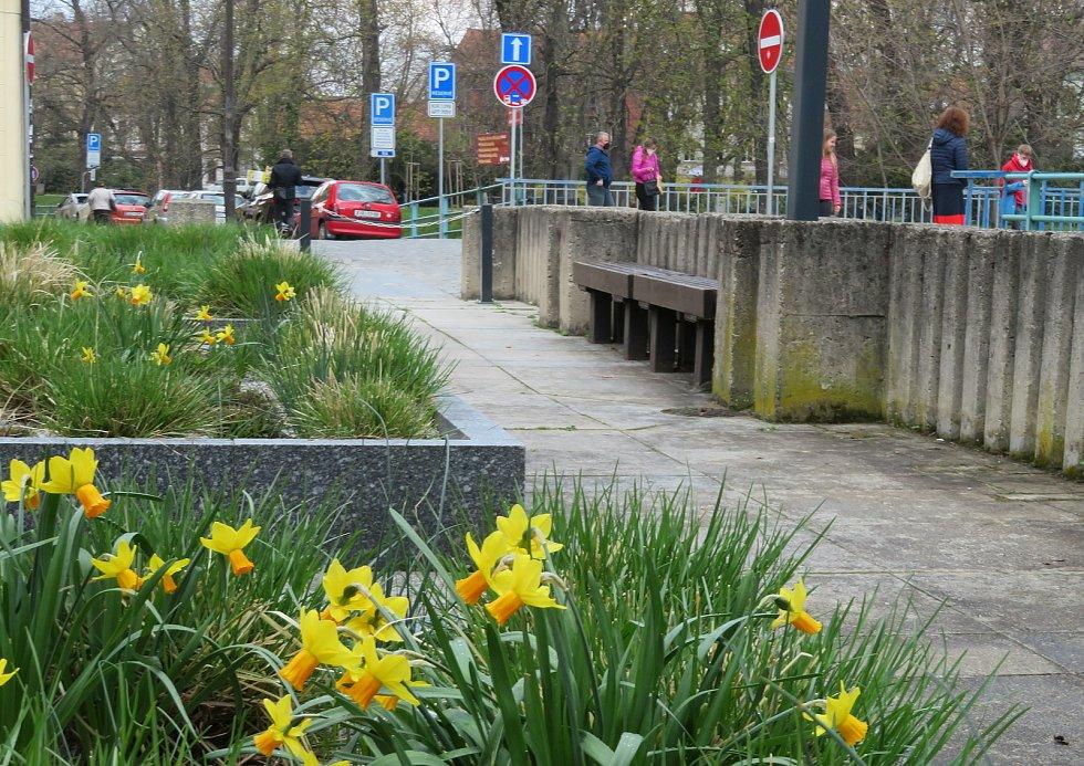 Ulice Českých Budějovic se pohybuje muž v sutaně s velkým dřevěným křížem, nejčastěji se má vyskytovat na Senovážném náměstí, kolem pošty a Lannově třídě.