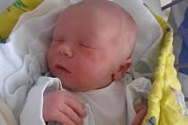 Tříapůlletý Vavřinec už doma v Českých Budějovicích netrpělivě očekává příjezd bratříčka Vendelína Pospíchala. Ten se narodil ve středu 20. 5. 2015 pět minut po 9. hodině. Vážil 3,33 kg.
