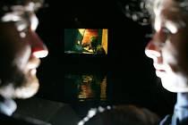 VRCHOL NA VODĚ. Třeboňský Anifilm vyvrcholil v  sobotu projekcí z hladiny rybníka Svět. Pětidenní přehlídka uvedla kolem 300 snímků, zájem byl i o dílny animace a nový film Jana Švankmajera.
