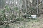 Následky orkánu Kyrill a následných větrných poryvů na počátku roku 2007. Terčino údolí.