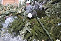 Vánoční strom zdobili 19. listopadu