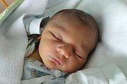 Suchdol nad Lužnicí bude domovem Alexandra Norberta Kici. Nikola Kicová jej přivedla na svět 2. 4. 2018 ve 23.53 h. Novorozený Alexandr po porodu vážil 3,50 kg.