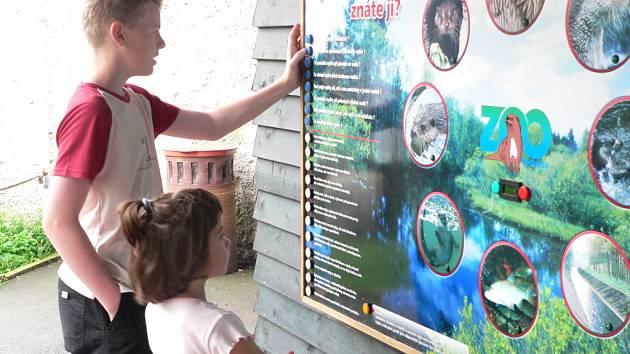 Asi nejoblíbenějším zvířátkem hlubocké zoo je vydra.