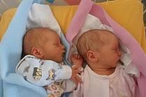 Dvojnásobnou radost připravili sedmiletému synovi Honzíkovi rodiče Eva Hesová a Vít Jarolím. V pátek 27.9.2013 na svět přivítali dvojčátka Víta a Veroniku. Vít se narodil v 8.33 hodin a vážil 2,78 kg. Veronika v 8.35 hodin s porodní váhou 2,81 kg.