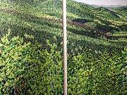 V krumlovském Egon Schiele Art Centru skončí 1. listopadu tři výstavy ze souboru Mysterium Šumava: díla, která vystavili Ondřej Maleček, Karin Pliem a Katharina Dietlinger. Expozice Josefa Váchala a Fotoateliéru Seidel jsou prodlouženy do 31. ledna.