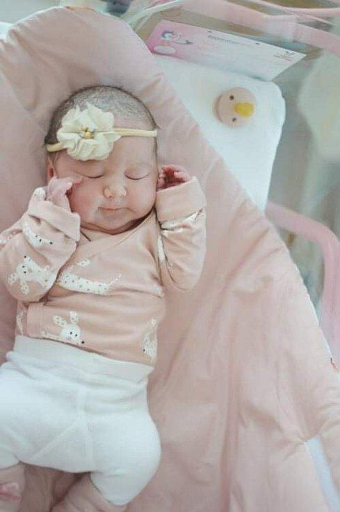 Krásný dárek dostali pod stromeček Gabriela Hatalová a Tomáš Hamrlík z Jindřichova Hradce. V tento den se jí v 7.24 h. narodila dcera Beátka Hamrlíková, vážila 3,69 kg.
