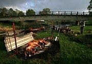 V Milenovicích na Protivínsku se tak jako ve většine jihočeských obcí připojili k dávné tradici stavení máje na oslavu jara a pálení čarodějnic, to aby se vše zlé v noci z 30. dubna na 1. května lidem vyhnulo. Milenovice přímo sousedí se břehy reky Blanic