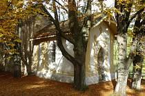 Kaple u Habří je zasvěcena sv. Vítu, stejného patrona měl i kostel, u jehož torza kaple stojí.