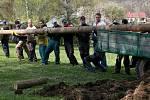 Doudlebští připravili pro letošní májku 28 metrů vysoký smrk a načali rum, který k májce loni zakopali