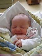 Krásných 2,99 kg to byla porodní váha Mariany Sattranové. Holčička přišla na svět 26.4.2011 v 8 hodin a 23 minut. Doma ji už s nadšením očekává dvouletý bráška Vítek. Obě děti budou vyrůstat v Českých Budějovicích.
