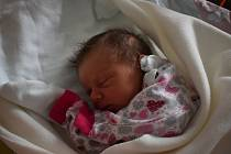Žofie Šnoblová. Sourozenci Josef, Daniela, Kateřina a Matěj už doma čekali na svoji malou sestřičku Žofii Šnoblovou. Narodila se 20.10. 2020 v 7.36 hodin a vážila 3,03 kg.