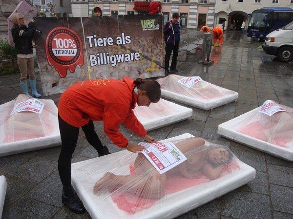 Ochránci zvířat protestovali.