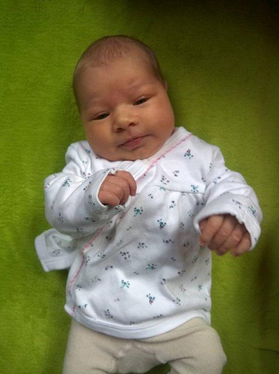 Do Dvorů nad Lužnicí odjela se svými rodiči Františkem a Lenkou Oulických novorozená Vendula Oulická. Na svět přišla 11. 1. 2019 ve 4.17 h. Její porodní váha byla 3,41 kg.