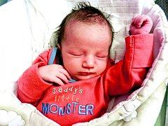 Viktor Vrábek se rodičům Markétě a Lukášovi narodil v budějovické nemocnici ve čtvrtek 23. 7. 2015 v 16.27 h. Vážil 3,74 kg a měřil 53 cm. Doma    v Českých Budějovicích se na něj těšili bráškové Richard, Dominik a Tobias.